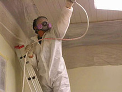 Mold Remediation Jacksonville FL